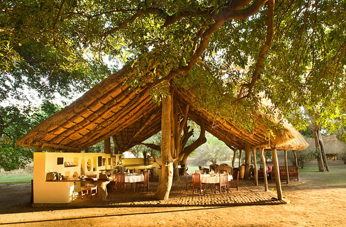 Safari camps image