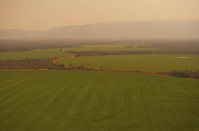 Agribusiness image