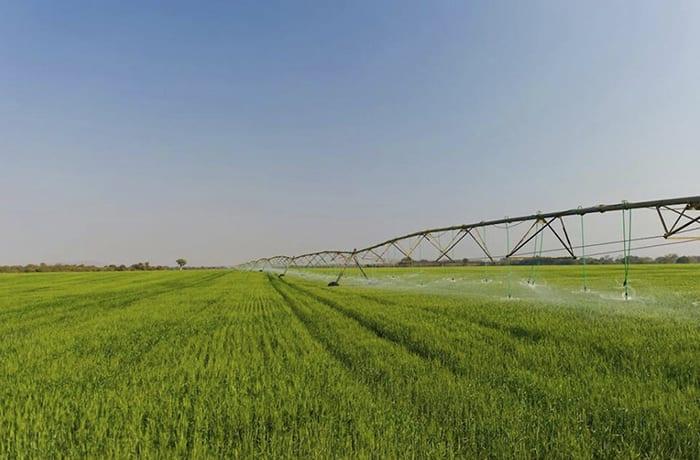 Crop farming image