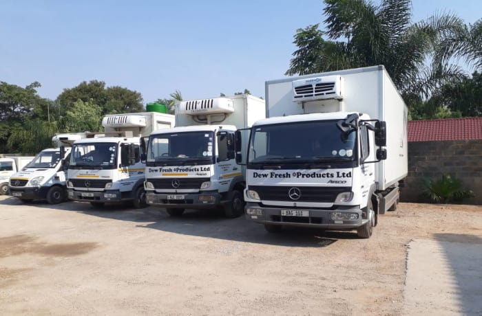 Truck and Bus sales image