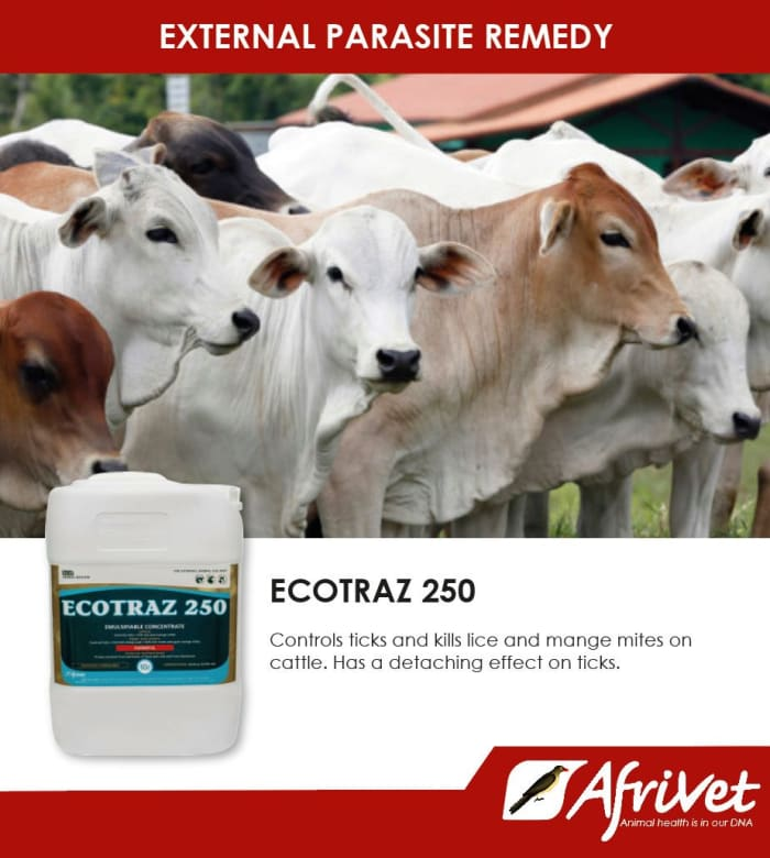 Ecotraz 250 - external parasite remedy