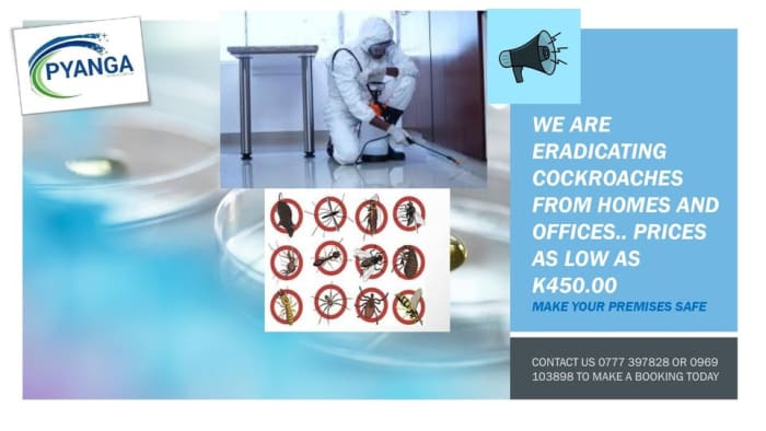 Engage Pyanga for all pest termination for all your premises