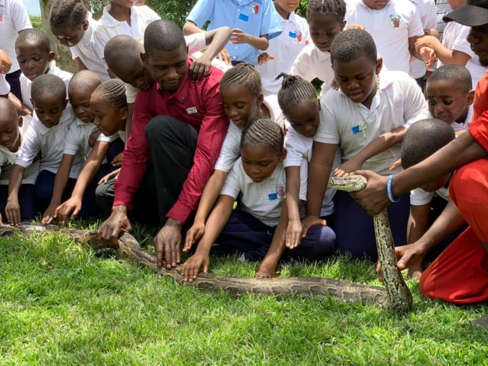 Education tours now available at Kalimba Reptile Park