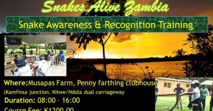 Snake Awareness and Recognition Training in Kitwe