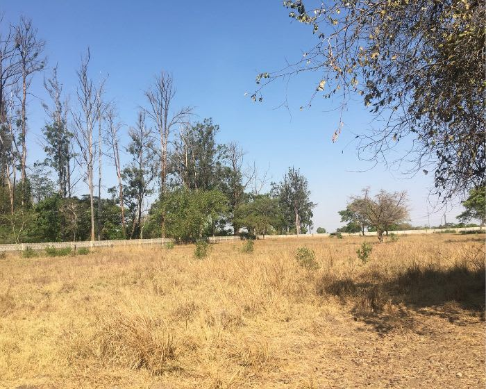 4Ha Vacant land for sale in Lusaka East