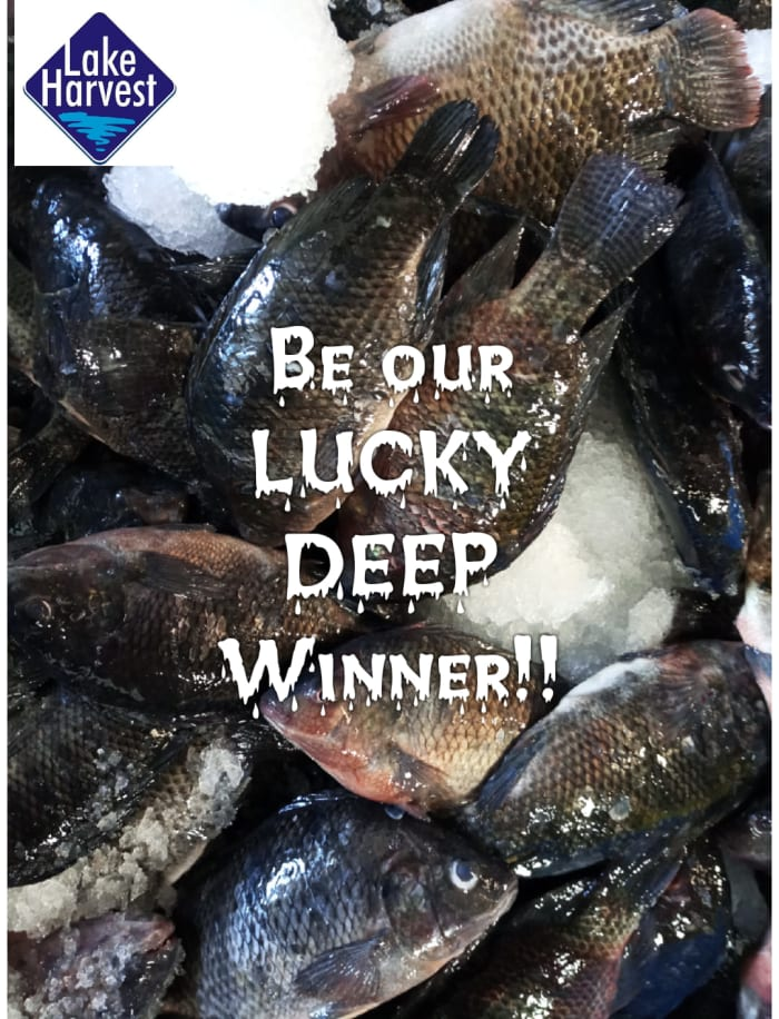 Buy and be a lucky deep winner