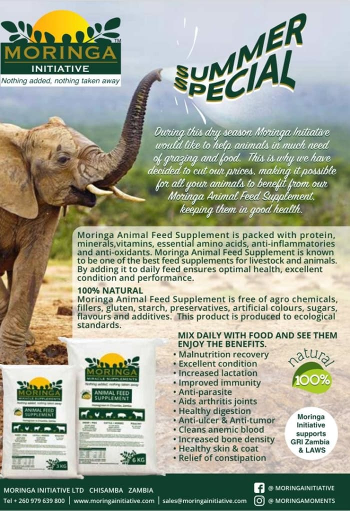 Summer special for Animal Feed Supplement and Pet food Supplement in Zambia!
