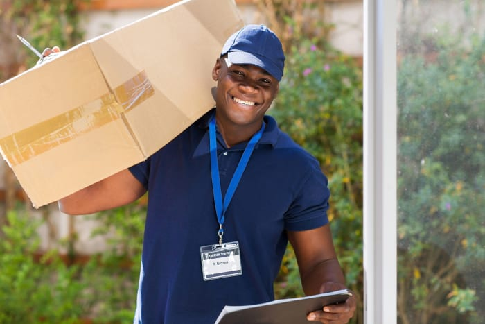 Reliable domestic courier services with express delivery solutions