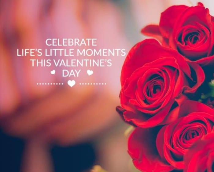 Valentines dinner specials