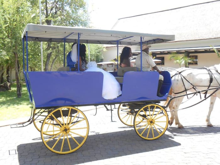 Horse drawn carriage experience around the resort complex