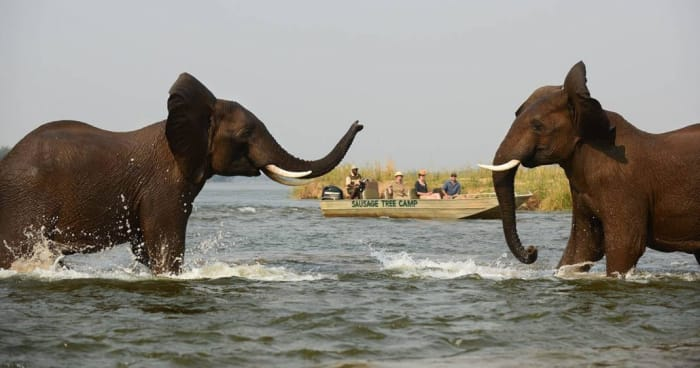 Increment in National Park entry fees