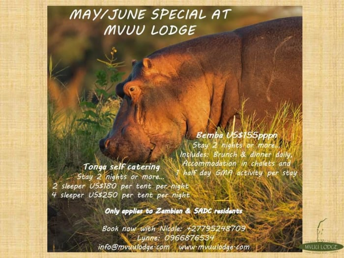 May / June special at Mvuu Lodge