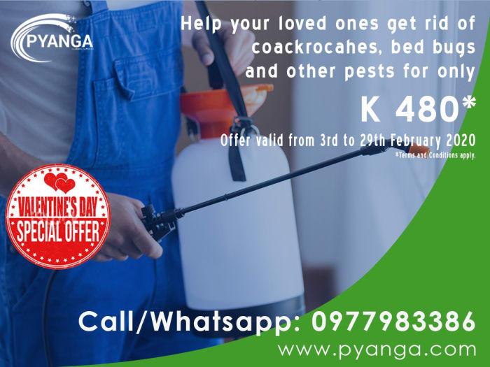Get bug free