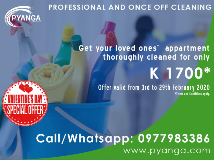 Get your home sparkly clean
