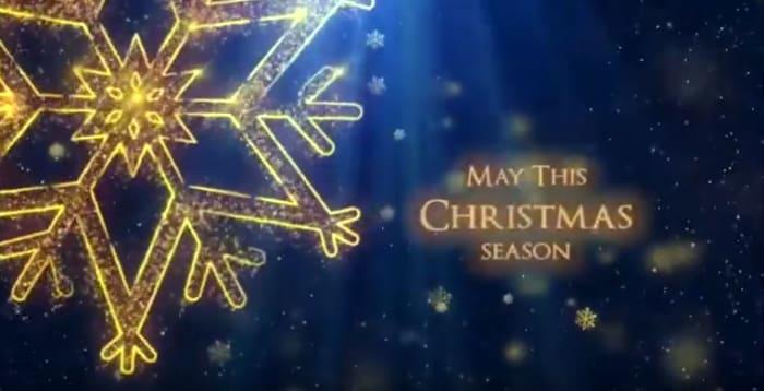 Seasons Greeting from Springfields