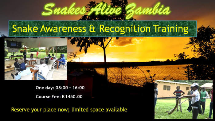 Snake Awareness and Recognition Training