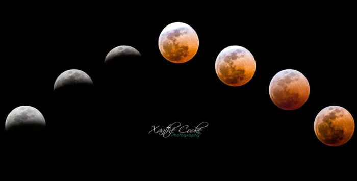 Lunar Eclipse photos by Xanthe Cooke Photography
