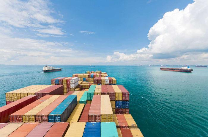 Navigates regulations governing all aspects import / export process