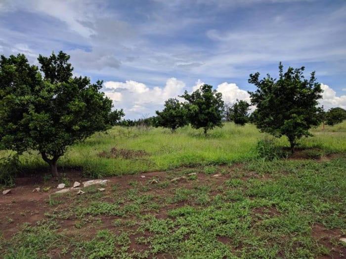 2.5 Acre farmland for sale in Chikumbi Area