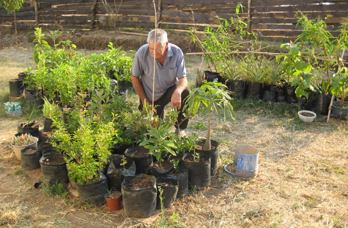 Aims for the sustainable use of trees and agriculture