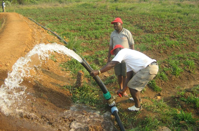 Wide experience in supplying irrigation systems