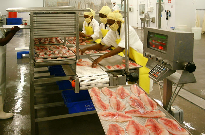 Bespoke filleting and preparation