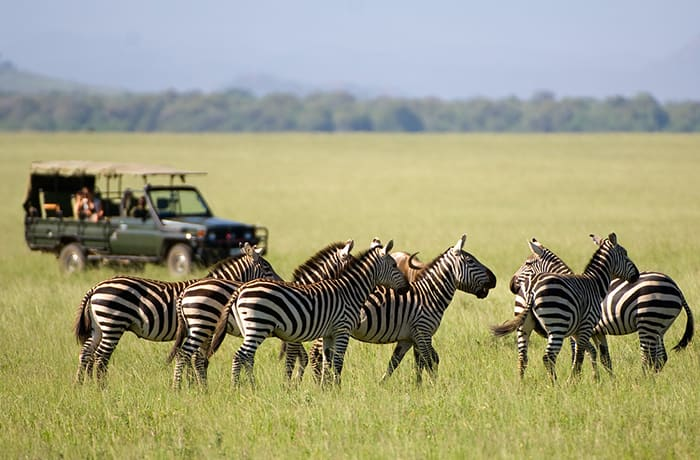 Tailor made itineraries and travel packages within Southern Africa