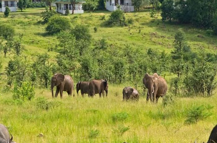 Plan your itinerary to any destination in Zambia and Southern Africa