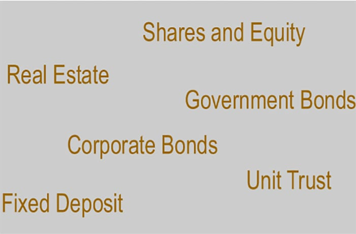 Government bonds and corporate bonds