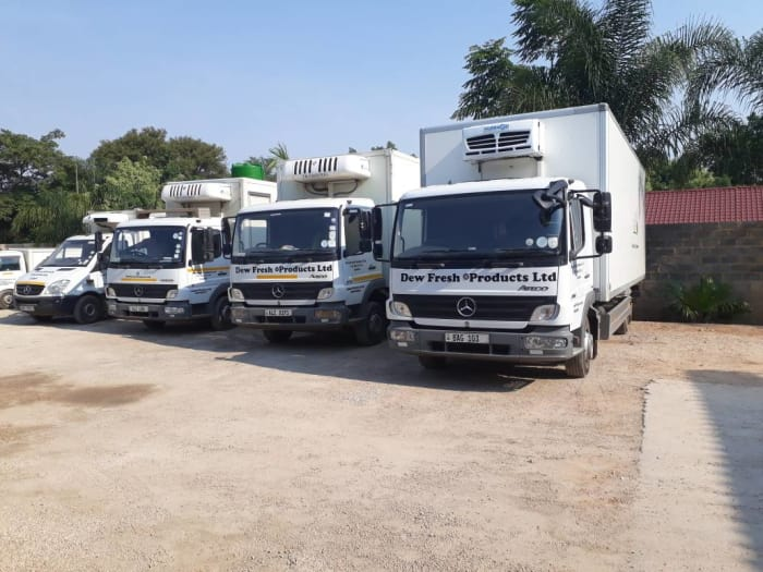 Truck and Bus sales