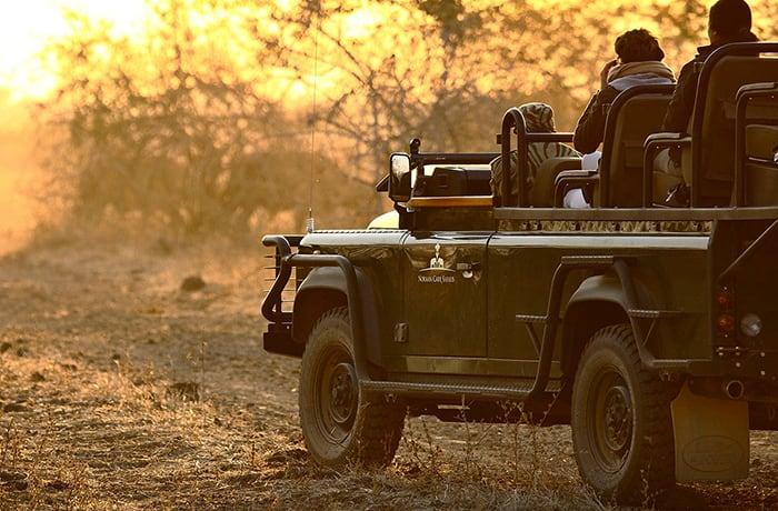 Safaris in Zambia, Malawi, Botswana, South Africa and Mozambique