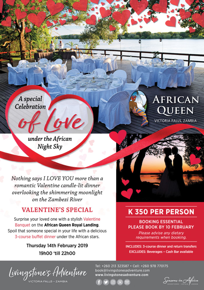 A special celebration of love under the african night sky