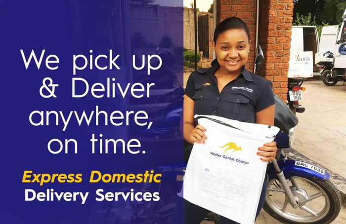 Express domestic delivery services