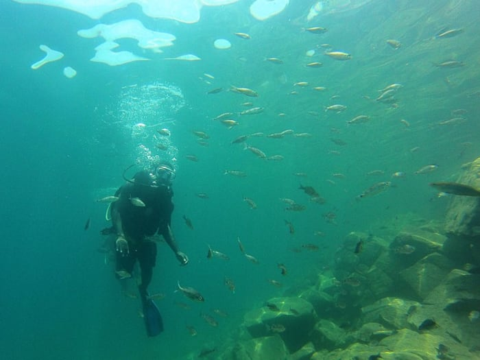 Congrats to the Discover Scuba Divers of Ndole Bay