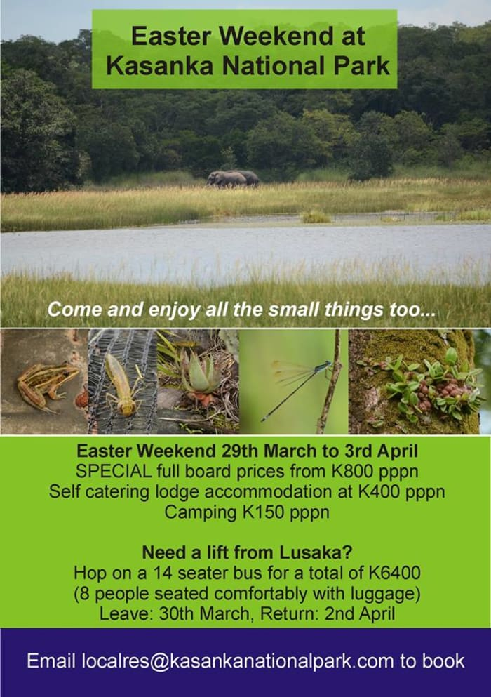 Kasanka National Park Easter Special