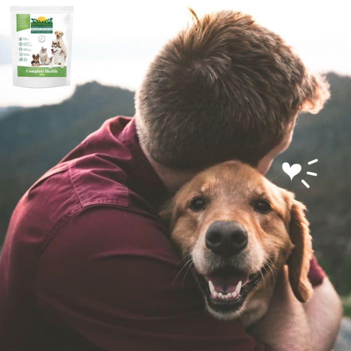 Moringa pet supplement available