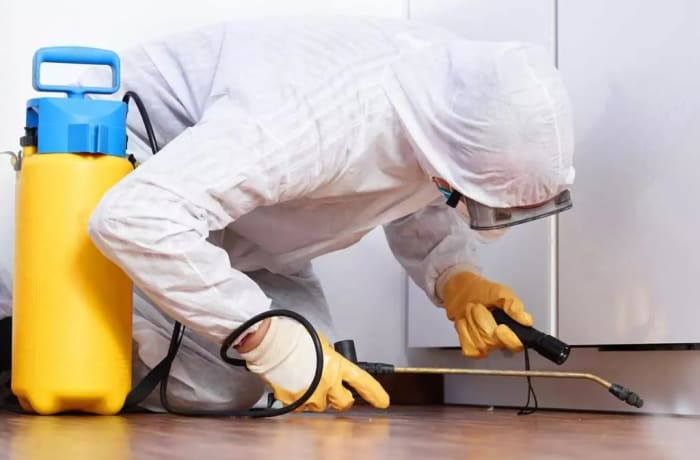 Send Pyanga Cleaning Services an enquiry today and have a pest free home!