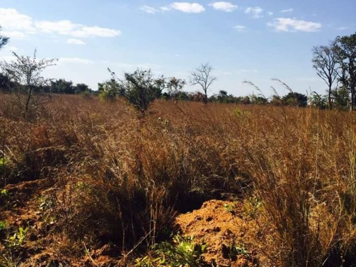 2Ha vacant land for sale in Ngwerere