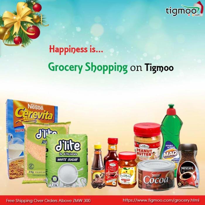Tigmoo online grocery shopping