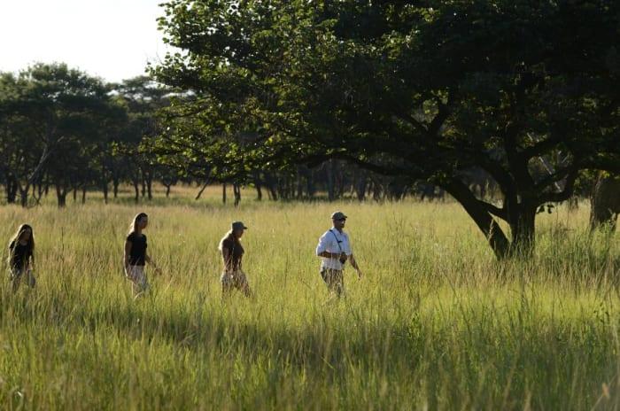 Walking Safaris at Lilayi Lodge