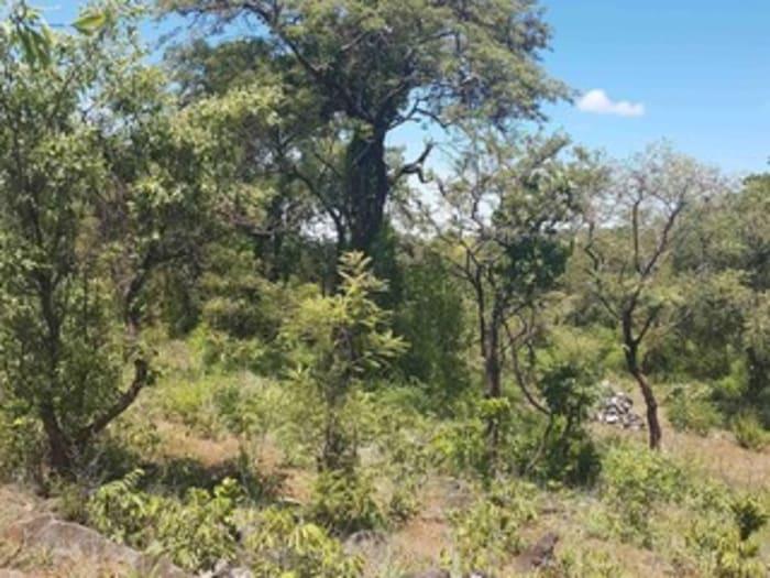 Virgin land for sale off Kafue Road