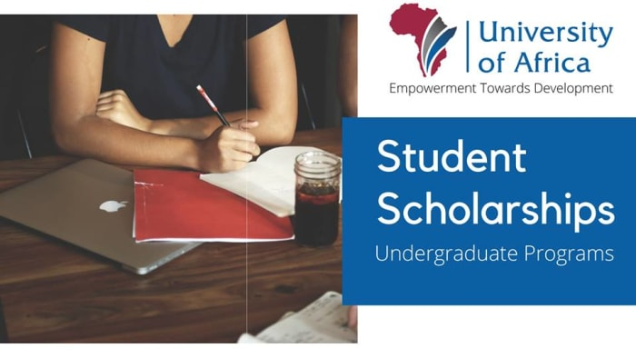 Scholarships for undergraduate programs available