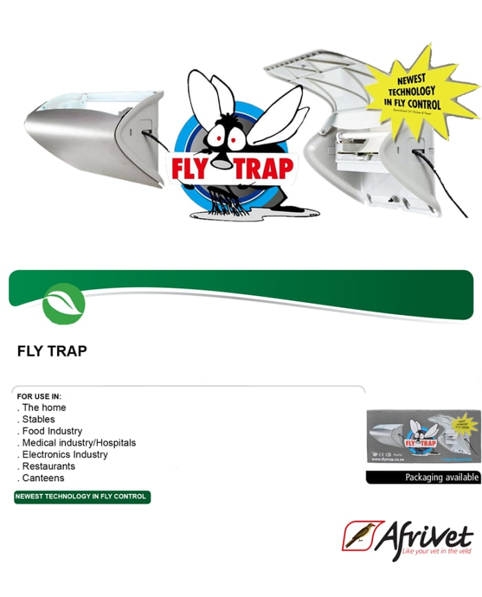 Fly traps available in stock
