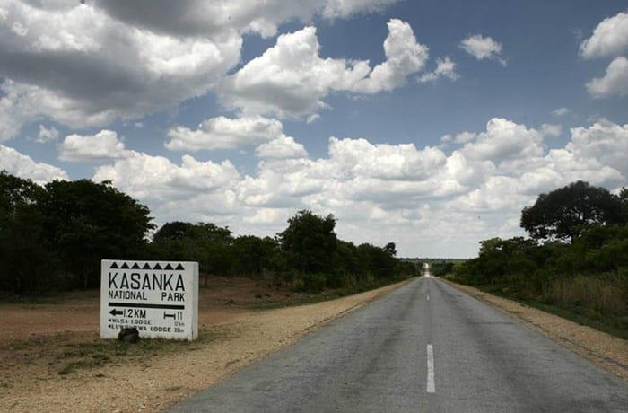 Kasanka Trust image