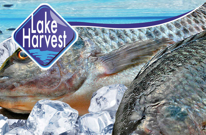 Lake Harvest Zambia Ltd image