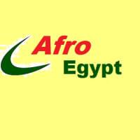 Afro Egypt Engineering logo