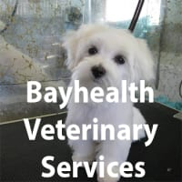 Bayhealth Veterinary Services logo