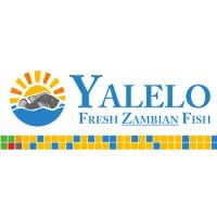 Yalelo logo