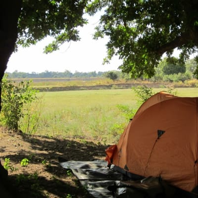 Zikomo Safari Camp image