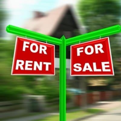 Estate Agent image